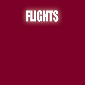 flights-to-guadalajara-jalisco-mexico-293x293